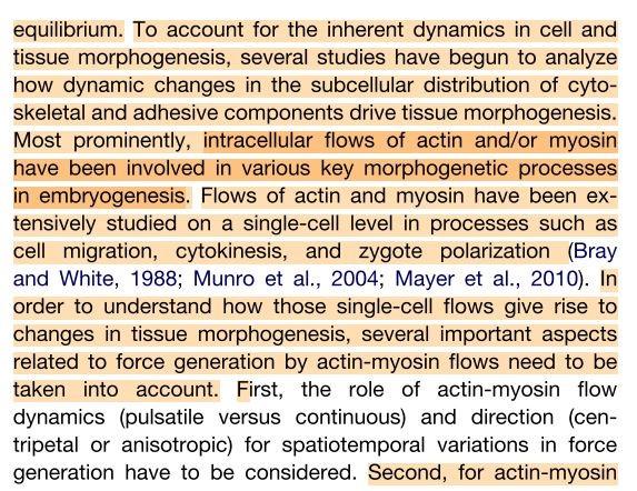 apa research paper order microsoft word